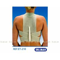 Эластичный реклинатор грудного отдела позвоночника ET-210 Orliman
